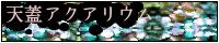別館・天蓋アクアリウム
